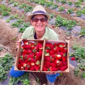 Carolyn Kates with crates of strawberries